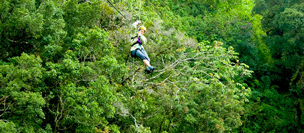 zipline-jungle